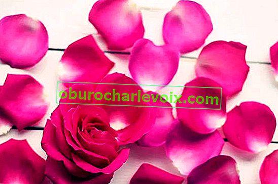 Gulbesheker и gulkand, или готвене с рози