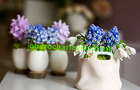 Пролетна фентъзи японска глина