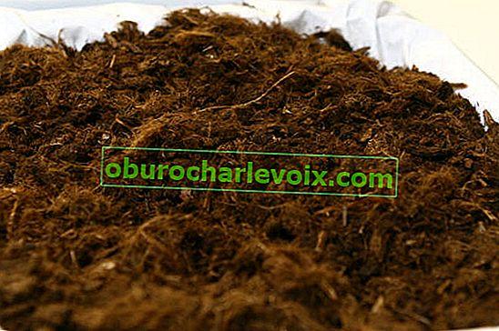 Analyse der Bodenzusammensetzung direkt vor Ort