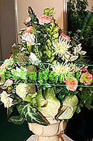 So halten Sie Blumen länger frisch