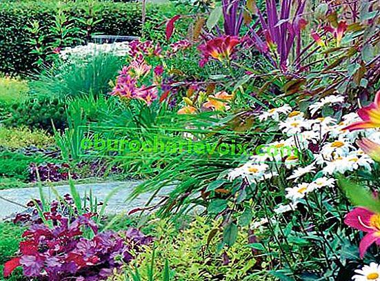 Gartenzusammensetzung und Farbgesetze