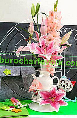 Nejkrásnější květiny pro učitele
