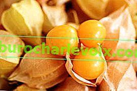Što se može napraviti od fizalisa od jagoda?