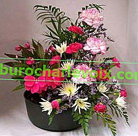 Pot-e-fleur или цъфтяща саксия