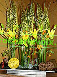 Die Kunst, Blumensträuße zu machen