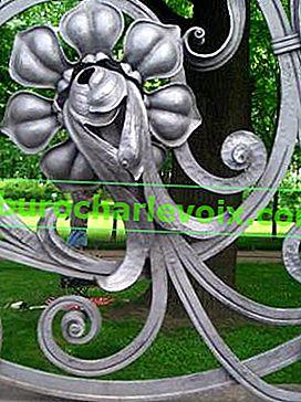 Пасифлора - мечтата на гурме и любител цветар