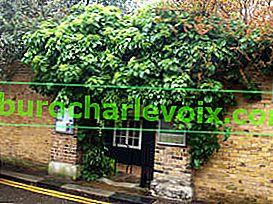 Der älteste botanische Garten in Chelsea