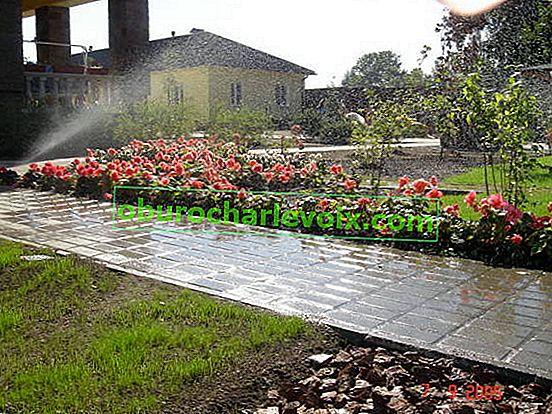 Automatische Bewässerung der Baustelle zum Selbermachen