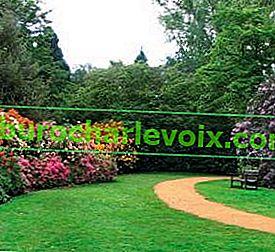 Романтична градина