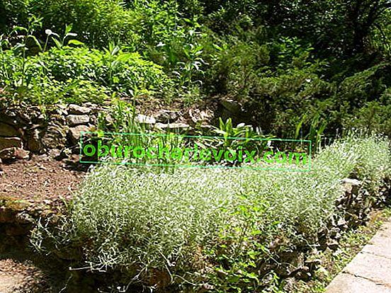 Alpská skluzavka v zahradě