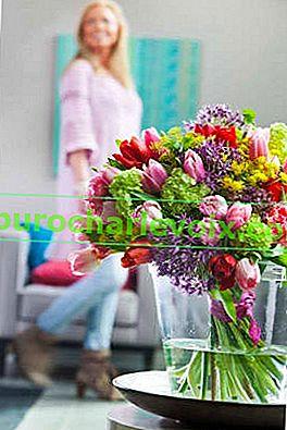 Jarní kytice pro vaše milované: průvodce pro muže