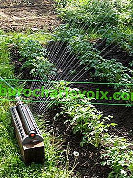Einfaches Bewässerungssystem für den Standort