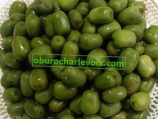 Plody Actinidia: jak potraviny, tak léky