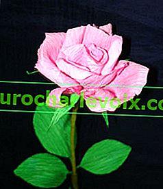 Букет от едно цвете